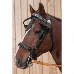 Шоры кожаные купить в интернет магазине конной амуниции